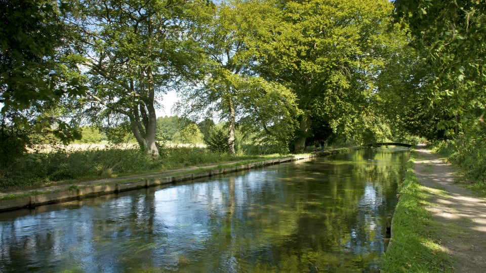 Things to do in Hampshire, places to visit